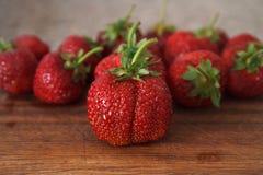 草莓v 图库摄影