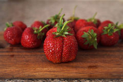 草莓VIII 免版税库存图片