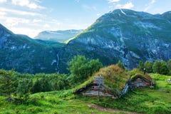 草被顶房顶的房子在挪威 库存照片