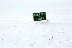 草让开 图库摄影