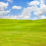 绿草领域 库存照片