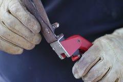 草飞剪机在手套的手上 免版税库存图片