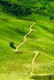 绿草围拢的绕山道路 免版税库存照片