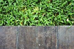 草 背景棕色树荫纹理木头 库存图片