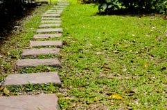 草绿色石头走道 库存图片