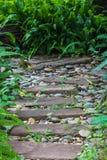 草绿色石头走道 免版税库存图片