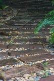 草绿色石头走道 免版税库存照片