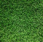 草绿色纹理 免版税库存照片