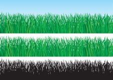 绿草 向量例证