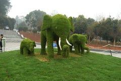 草elephents雕塑在植物园里 库存照片