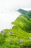 绿草moutain和白色雾 免版税库存图片