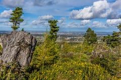 荒地土地和针叶树在都伯林山,俯视的都伯林,爱尔兰 库存照片