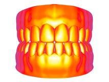 荒地地图-假牙 向量例证