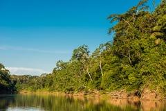 荒地河秘鲁亚马逊密林马德雷德迪奥斯秘鲁 免版税库存照片