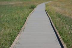 荒地的一条木板走道 图库摄影