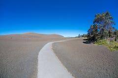 荒芜足迹夏威夷 库存照片