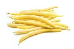 黄荚种菜豆 免版税库存图片