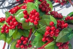 荚莲属的植物人为莓果,由织品制成,背景,焦点选择 图库摄影