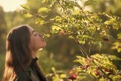 荚莲属的植物或欧洲花楸晴朗室外的春天女孩 在树附近的妇女立场在春天 温泉疗法和 免版税图库摄影