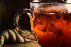 荚莲属的植物自创炽热茶用柠檬和蜂蜜在一个玻璃杯子 免版税库存图片