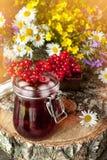 从荚莲属的植物莓果的汁液在玻璃容器的在野花旁边花束的一块餐巾在一个木立场的 土气 免版税库存照片