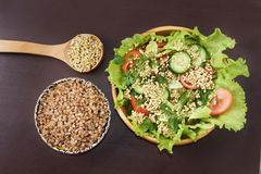 荞麦新芽 健康吃 素食食物 新鲜的沙拉 库存照片