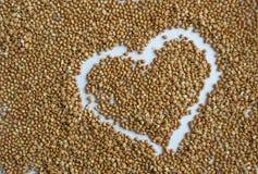 从荞麦的背景 库存照片