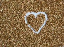 从荞麦的背景 免版税库存照片