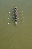 荡桨在多瑙河的八个人 免版税库存图片