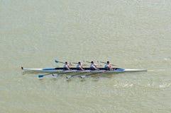 荡桨在多瑙河的四个人 免版税库存照片