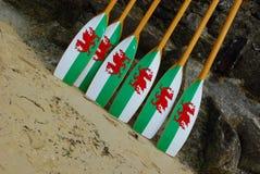 荡桨威尔士的桨 库存图片