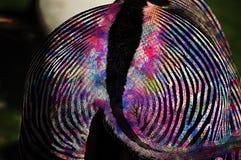 荧光的斑马 图库摄影
