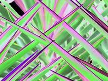 荧光的绿色和流行粉红棕榈叶状体特写镜头刺中样式 库存照片