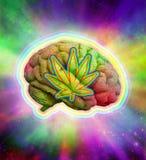 荧光的脑子大麻 库存图片