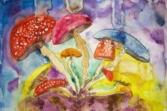荧光的蘑菇失眠 免版税库存照片