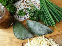 荨麻馄饨用蘑菇绿色面团从荨麻烹调了 免版税库存照片