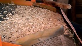 药丸的生产技术从废木料的 影视素材