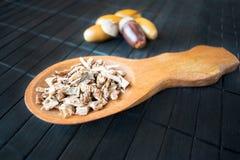 药用植物橡木(栎属)在backg的棕色木匙子 图库摄影