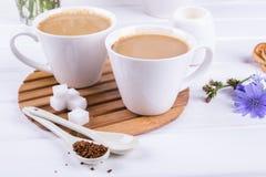 药用植物苦苣生茯,饮食在一个杯子的饮料苦苣生茯用牛奶早餐 库存图片