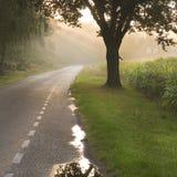 荷兰乡下公路和农场 免版税库存图片