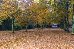荷兰乡间别墅在秋天 免版税图库摄影