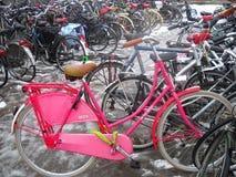 荷兰人Oma自行车(桃红色Grandmama自行车) 库存照片