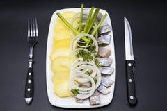 荷兰全国开胃菜,鲱鱼用葱 冰岛鲱鱼鲜美片断用煮沸的土豆和葱在板材 图库摄影