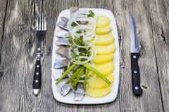 荷兰全国开胃菜,鲱鱼用葱 冰岛鲱鱼鲜美片断用煮沸的土豆和葱在板材 免版税库存照片