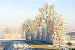 荷兰农村冬天 库存照片