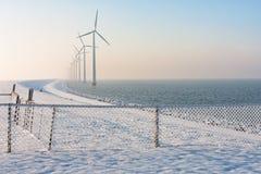 荷兰堤堰在与雪、篱芭和风轮机的冬天 库存图片