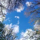 荷兰天空惊奇 免版税库存图片