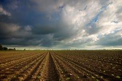 荷兰天空 免版税图库摄影