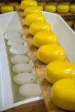 荷兰干酪卷 库存图片