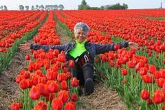 荷兰红色郁金香域的愉快的妇女 库存照片
